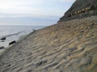 Прикрепленное изображение: дно океана Тетис.jpg