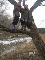 Филя на дереве