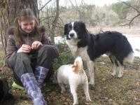 Маша с собаками
